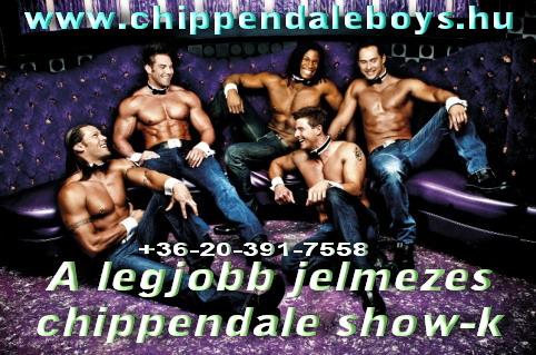 Chippendale Show a legjobb srácoktól+limuzin bérlés leánybúcsúkra,szülinapra!